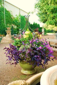 """container garden p'd by pinner on cynthialudlow/gardens-and… This is a good idea..using a wire vase or some shape to make a form for wandering jew to work out of, and with. Even if wj doesn't """"vine"""". This makes for a good design."""