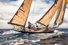 Glow through the Sails.