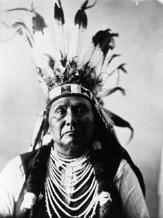 The earth is the mother of all people, and all people should have equal rights upon it.  Chief Joseph - Hin-mah-too-yah-lat-kekt (Thunder coming up over the land from the water)