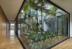 David Guerra wraps Brazilian house around courtyard filled with tropical plants Indoor Courtyard, Internal Courtyard, Courtyard House, Tropical House Design, Tropical Houses, Tropical Garden, Tropical Plants, Modern Tropical, Casa Patio