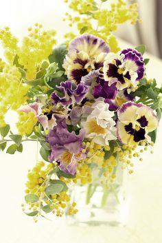 Floral Arrangement - mimosa pansy