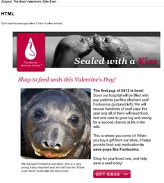 A Valentine's Day A/B Test Case Study in Action via Frogloop / Marine Mammal Center Elephant Seal, Network For Good, E Cards, Global Warming, Case Study, Fundraising, Valentines Day, Action, Valentine's Day Diy