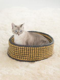 Pretty Kitty Bed A 5 x 47 in. (12.5 x 119.5 cm) piece of plastic canvas or pliable cardboard