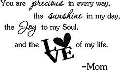 You are precious in every way, the sunshine in my day, the joy in my soul, and the love of my life. Mom cute baby nursery inspirational wall art sayings