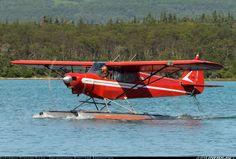 Piper PA-18-... Super Cub aircraft picture
