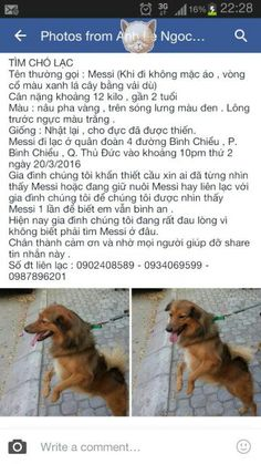 Please help me find my Dog ( Messi )