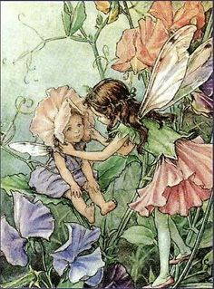 Fairy Art Cicely Marie-Barker