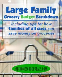 Large Family Grocery Budget Breakdown with Large Family Grocery List
