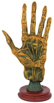 A wonderful tool for magical study, this palmistry hand from Alchemy depicts a human hand as though it were taken from a corpse for study and etched with alchemical symbols and the markings of palmistry. The result is a tool that seems equally suited upon Hand Statue, Aztecas Art, Op Art, Show Of Hands, Fortune Telling, Palmistry, Tarot Decks, Wiccan, Wicca Witchcraft