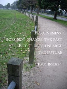 Forgiveness does not change the past but it does enlarge the future - Paul Boesse