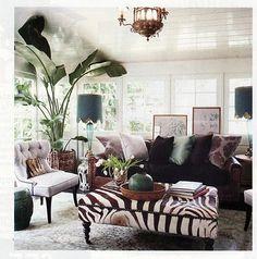 eggplant living room
