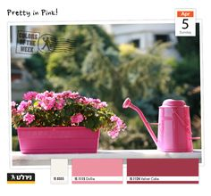 Pretty in Pink Apartment Balcony Garden, Small Balcony Garden, Balcony Flowers, Balcony Gardening, Balcony Ideas, Beautiful Flowers Garden, Beautiful Gardens, Outdoor Plants, Outdoor Gardens