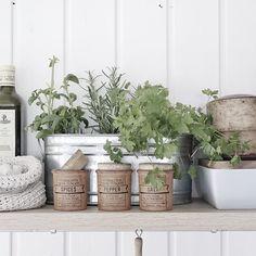 Kitchen details🌶🌱 Scandinavian, Planter Pots, Cottage, Kitchen, Summer, Cooking, Summer Time, Cottages, Kitchens