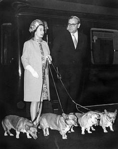 ueen Elizabeth II with her four Corgis at King's Cross railway station in London after a holiday in Balmoral Castle in Scotland on Oct. 15, 1969. This photo was taken right before the queen welcomed the astronauts of Apollo 11 at Buckingham Palace after they had walked on the moon. (STF/AFP/Getty Images)