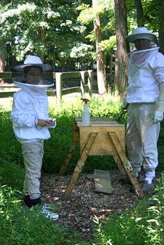 Be the Bee: Backyard Beekeeping Basics