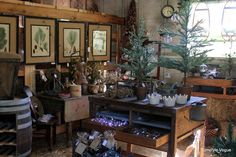 primitive christmas trees for sale - Google Search