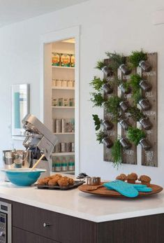 herb wall in the kitchen Roxton - contemporary - kitchen - vancouver - Portico Design Group Herb Garden In Kitchen, Diy Herb Garden, Kitchen Herbs, Garden Ideas, Spice Garden, Kitchen Ideas, Herbs Garden, Diy Kitchen, Kitchen Photos