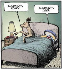 Goodnight Honey. Goodnight Deer.