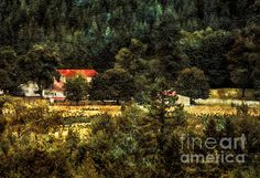Farmhouse by Belinda Greb