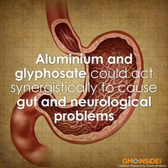 Aluminium & Glyphosate—How They Can Act Synergistically To Impair Gut Function & Promote Neurotoxicity (Paper By Stephanie Seneff & Co-Authored With Nancy Swanson & Chen Li)