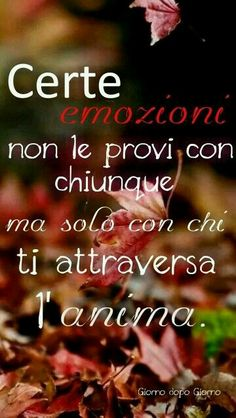 Con questa frase direi di poter chiudere la giornata! A.M. Beautiful Words Of Love, Love Words, Cant Stop Loving You, I Love You, Best Quotes, Love Quotes, Italian Quotes, Feelings Words, Love Life