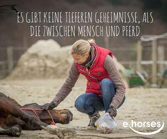 Vertrauen ist das A und O <3 www.ehorses.de