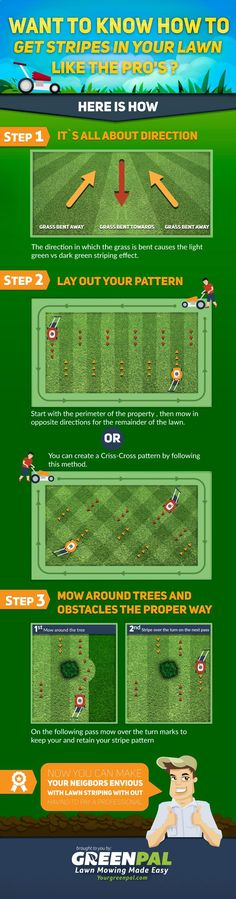 Garden Tips - Infographic: How to Get Beautiful Stripes in Your Lawn Now is the time to start looking after the lawn so this summer is beautiful. That's why I'm going to start explaining how to start keeping it.