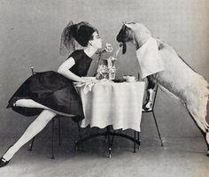 Vogue, November 1960Photographers: Leombruni-Bodi