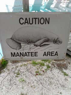 Manatee safety...signs seen frequently in our Intercoastal waterways in Venice and Sarasota, Florida.