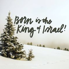 Read A Prayer to Our Prince of Peace - Your Daily Prayer - December 14 devotional and be encouraged to grow in your faith by bringing your worries and frustrations to God!