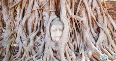 Excursie din Bangkok | Ayutthaya, locul unde te pierzi printre temple străvechi