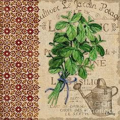 Tuscan Herbs I by Paul Brent