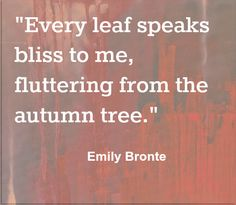 I want fall now.... Emily Bronte gets me. - Elizabeth