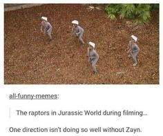 """""""The raptors in Jurassic World during filming..."""" """"One Direction isn't doing so well without Zayn."""""""