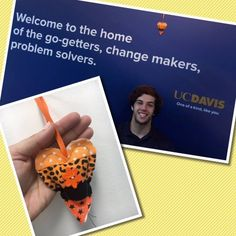 We found a heart on UC Davis campus by Spafford Lake and now it lives at the Alumni Center! #ifaqh #ifoundaquiltedheart