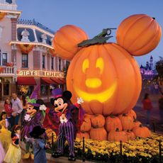 Would love to visit Disney at Halloween