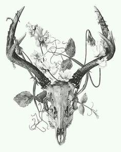 Morbid Beauty