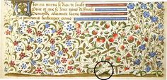 Calligraphy and Illumination: Flowers I wish I had this last project Page Decoration, Scribe, Flower Quotes, Nerdy, Hobbies, Calligraphy, Projects, Flourish Border, Flowers
