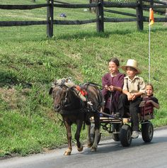Amish children drive their buggy by mountaintrekker2001, via Flickr