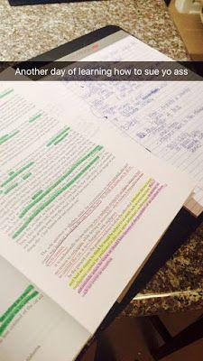 snapchats of a law student | brazenandbrunette.blogspot.com