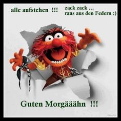 Guten morgen-thread page 61 - oneplus community Images Gif, Funny Images, Funny Photos, Good Morning Funny Pictures, Greetings Images, Morning Humor, Vintage Easter, E Cards, Happy Birthday Cards