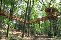 Awesome walkway