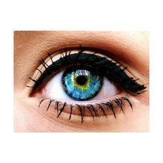 lostinthebigcity☮ ❤ liked on Polyvore featuring eyes, makeup, beauty, eye makeup and pictures