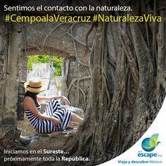 Siente el cariño de la gente de Cempoala y enamora a tu ojos con la belleza de su arqueología. ¡Y de ahí escápate a La Antigua! #Veracruz #Cempoala #México #Viajes #Turismo