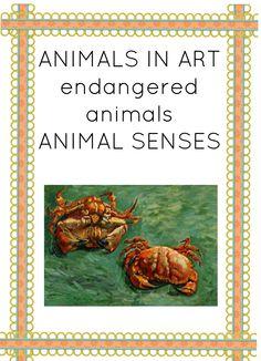 ANIMALS EDUCATIONAL MATERIAL MONTESSORI 3-PART NOMENCLATURE CARDS #printables #montessori #montessorinatureblog