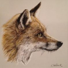 Red Fox II, Wildlife Art, Kirstie Fitzpatrick, SAA Professional Members' Galleries