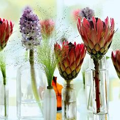 Toast and Tables: Crowing touch: Centerpiece of the week - Queen proteas and hyacinths