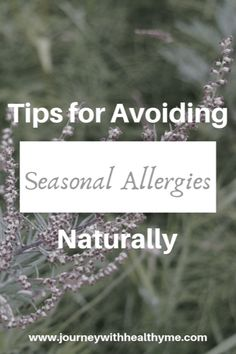 Tips for Avoiding Seasonal Allergies, Naturally - Journey With Healthy Me Healing Allergies Relieve Allergy Symptoms Naturally Natural Allergy Relief #journeywithhealthyme #tipsforavoidingseasonalallergiesnaturally #naturalallergyrelief Natural Allergy Relief, Natural Remedies For Allergies, Seasonal Allergy Symptoms, Seasonal Allergies, Health And Nutrition, Health Tips, Health And Wellness, Lemon Lime Water, Sinus Congestion Relief
