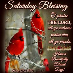 """SATURDAY BLESSING: Psalm 117:1 (1611 KJV !!!) """"O praise the Lord all ye nations: praise him, all ye people.""""  HAVE A BEAUTIFUL BLESSED DAY !!!!"""