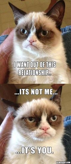 Grumpy Cat - I want out of this relationship - it's not me, it's you